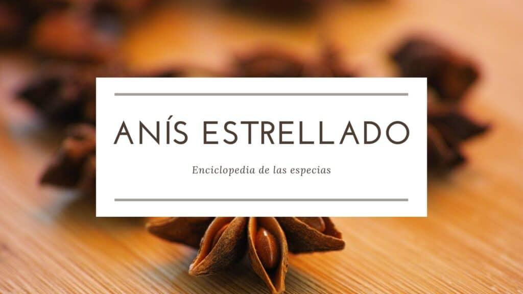 Anís estrellado | Enciclopedia de las especias | Spirosa